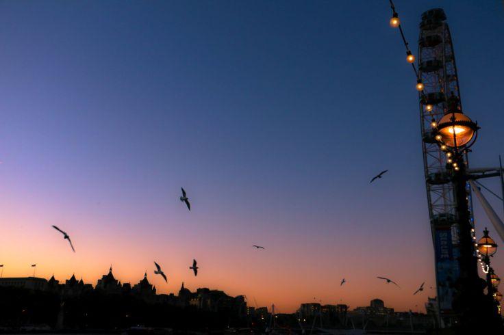 London_eye_view