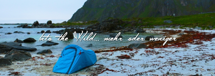 into_the_wild_wildnis_lofoten_natur_norwegen