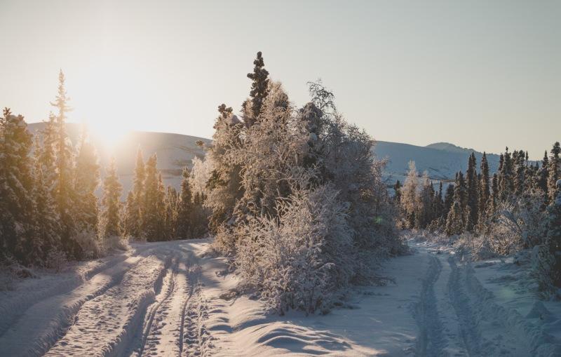 Alaska_wallpaper_1920x1280_junge_gedanken_jim_kopf.jpg