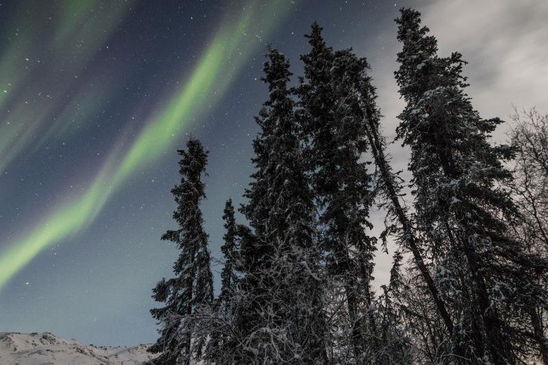 Nordlichter_alaska_aurora_reiseblog_junge_gedanken.jpg