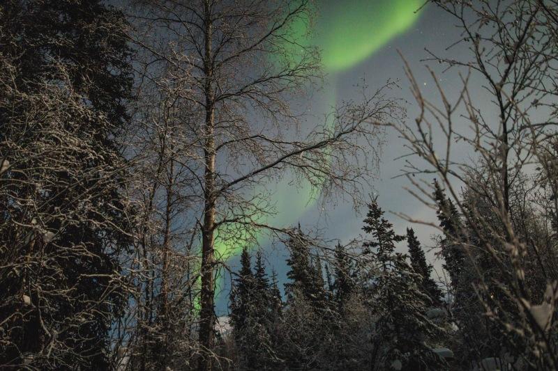 Nordlichter_alaska_aurora_reiseblogger_junge_gedanken.jpg
