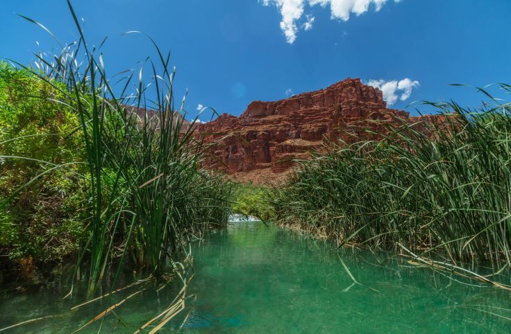 havasupai_water_grand_canyon.jpg