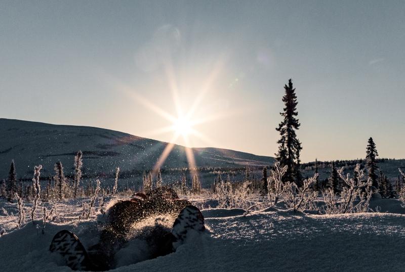 Reisebericht Alaska im Winter bei Schnee und Sonnenschein