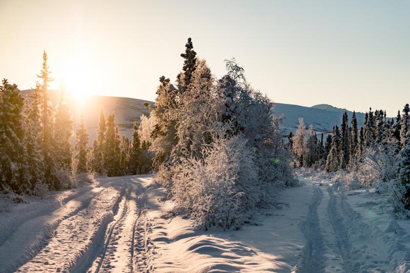 Landschaft von Alaska im Winter bei Sonne