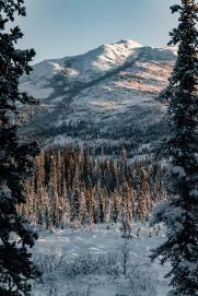Berge in Alaska im Winter mit Schnee