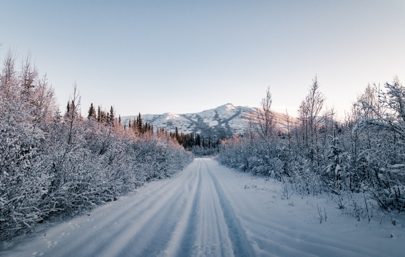 Aktivreise in Alaska im Winter