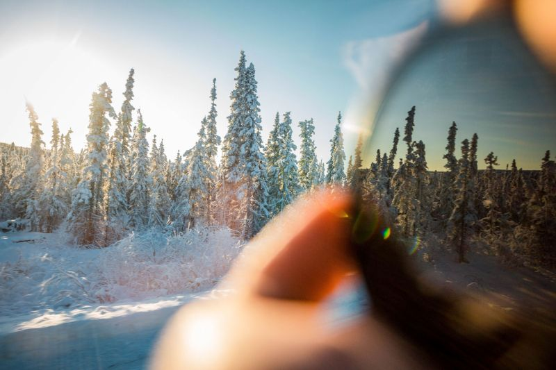 Alaska im Winter in der Natur und Freiheit